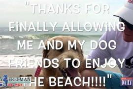 Dogs are now allowed on the beach in Cocoa Beach